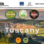 Projekt Born in Tuscany